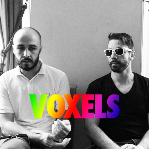 voxels